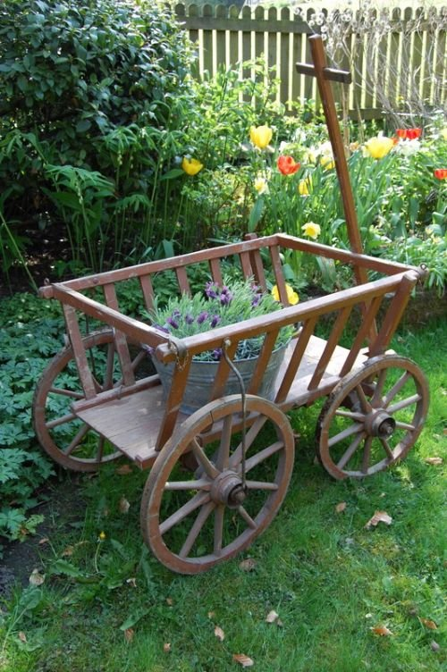 antique rustic wooden dog cart